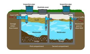 Diagram of Properly Functioning Septic System