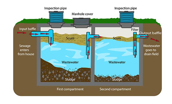 Septic System Repairs in MN | Diagram of Properly Functioning Septic System